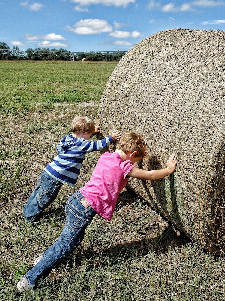 Young boys pushing straw bale
