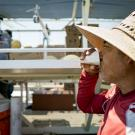 Farmworker drinking water