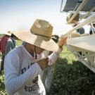 Farmworker drinking water in the field