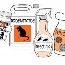Different forms of pesticides