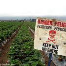 California Pesticide Safety sign