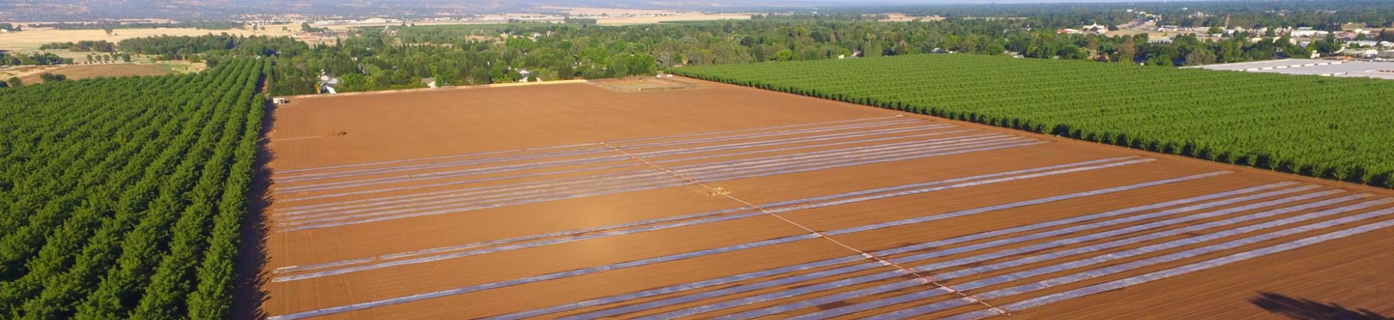 Aerial view of field with biosolarization research